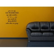The Custom Vinyl Shop 3819135 You Are My Sunshine Quote Wall Art