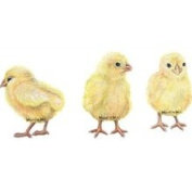 Walls of The Wild 30807 Chicks Wall Decal
