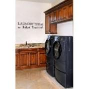 The Custom Vinyl Shop 5150091 Laundry Today or Naked Tomorrow