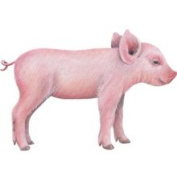 Walls of The Wild 160907 Pig 1 Wall Decal