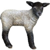 Walls of The Wild 120113 Lamb Wall Decal