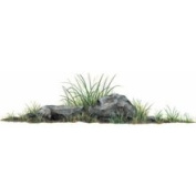 Walls of The Wild 180700 Rock Grass Wall Decal
