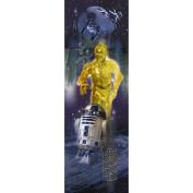 Star Wars Classic R2D2 Peel & Stick Panel Decals RMK1537SLM