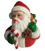 Santa Claus Rubber Duck Celebriduck