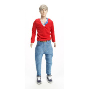 One Direction What Makes You Beautiful Doll Collection, Niall