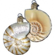 Old World Christmas Nautilus Shell Glass Ornament