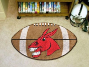 Fanmats F0000375 Central Missouri Football Rug 22 x35