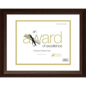 Timeless Frames Englewood Matted Document and award Frame