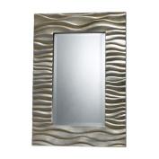 Dimond DM1927 Transcend Mirror in Silver Leaf W Black Antique