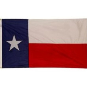 Valley Forge Flag Outdoor Flags 0.9m x 1.5m Nylon Texas State Flag TX3