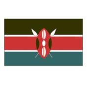 United States Flag Store Kenya 0.61m x 0.91m Nylon Flag - Outdoor