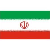 United States Flag Store Iran 0.61m x 0.91m Nylon Flag - Outdoor