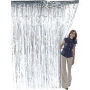 Silver Fringe Curtain - Office Fun & Business Supplies