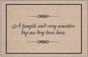 Fragile and Sensitive Dog Indoor/Outdoor Doormat