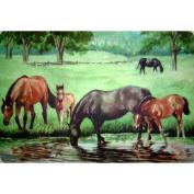 Custom Printed Rugs DM 24 Horse Pond Door Mat