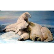 Custom Printed Rugs DM 34 Polar Bears Door Mat