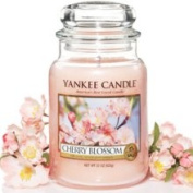 Cherry Blossom Yankee Candle 430ml