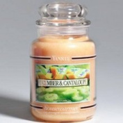 Cucumber & Cantaloupe Yankee Candle 650ml