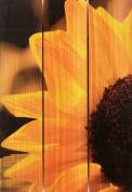 Gizaun Art Yellow Sunflower 41cm by 60cm Inside/Outside Wall Art, Full Colour on Cedar