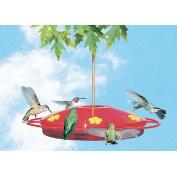 Perky Pet 221 Hummingbird Oasis Feeder, 470ml Red