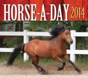 Horse-A-Day 2014