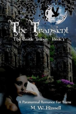 The Transient - Book One the Castle Trilogy: Book One the Castle Trilogy