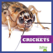 Crickets (Insect World