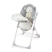 Bright Starts InGenuity Perfect Place High Chair
