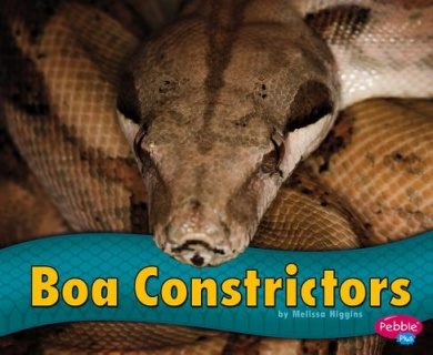 Boa Constrictors (Pebble Plus: Snakes)
