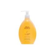 Back to Basics Citrus Sage Shower Gel 300ml