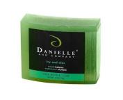Danielle and Company Organic Bar Soap R01095 Ivy and Aloe