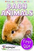 Baby Animals (Little Press)