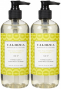 Caldrea Liquid Hand Soap, Sea Salt Neroli, 330ml