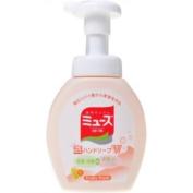 Earth Seiyaku Muse   Hand Soap   Bubble Hand Soap W Fruity Fresh 250ml