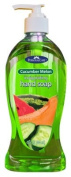 Personal Care Products Llc 92251-8 Liquid Hand Soap with Pump 440ml, Cucumber Melon