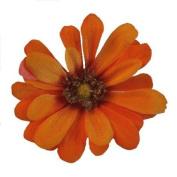 Small Zinnia Artificial Flower Hair Clip/Pin Brooch, Orange Mustard