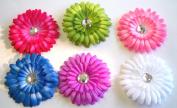 DAISY FLOWER CLIPS (6PCS SET)