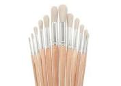 Value Line Bristle Brush Round Set of 12