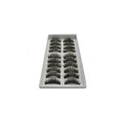 eBox 10 Pairs Of Reusable Thick False Eyelashes