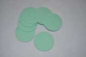 Compressed Sponge - 5.7cm Round - 24 Pack of Mint Green