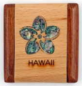 Compact Mirror of a Wooden Rectangle with an Abalone Inlay Plumeria