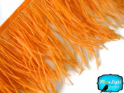 Moonlight Feather , Orange Ostrich Fringe Trim Feather - 10cm Strip of Ostrich Feathers