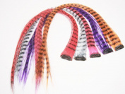 4 X Coloured Grizzly Synthetic Feather Clip on in Hair Extensions Beauty Salon Supply Wholesale Lot New