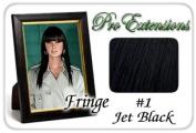 ProExtensions #1 Jet Black Pro Fringe Clip In Bangs