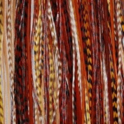 """4""""-15cm Mixes of Dark Browns,beige with Olive Feathers!"""