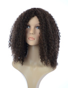 Dark Brown Long Spiral Afro Wig | Beyonce Style Long Full Afro Curl Wig