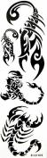 GGSELL YiMei Waterproof temporary tattoos scorpion totem