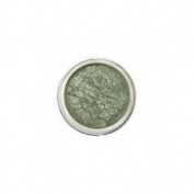"Mica Beauty Mineral Makeup Eye Shimmer ""Moss"" #58 + A-viva Beauty 4 Way Nail Buffer For Shiny Nails"