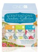 CND Scentsations Lotion Seashore Collection Lotion 60ml 3pcs/pk