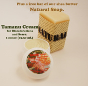 Carley's Tamanu Cream for Scars and Discolorations